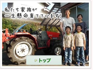 小田島農園-西日本は島根県産の無農薬米・無施肥米・無肥料米・自然栽培米をお届け致しますのナビゲーション