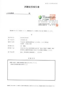 CCF20131102_00001